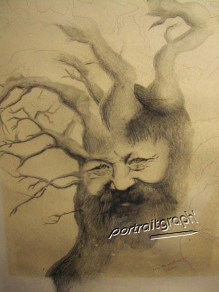 Vieil homme-arbre